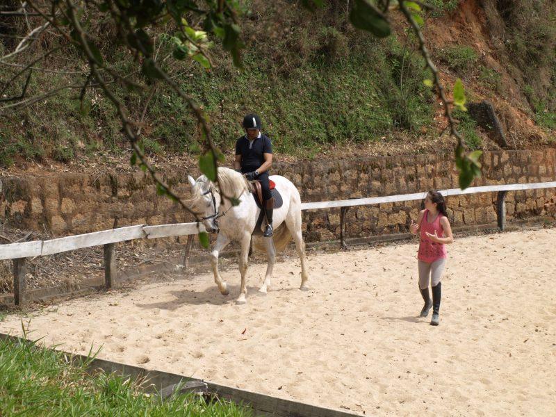 Aulas de hipismo, equitação, montaria, Thaty Vidal