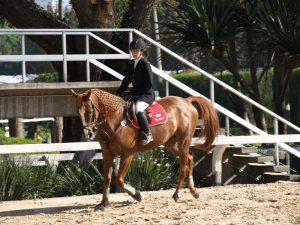 Thaty Vidal atleta e instrutora equestre